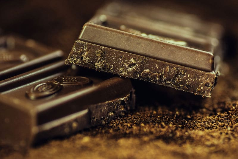 czy pies może jeść czekoladę?