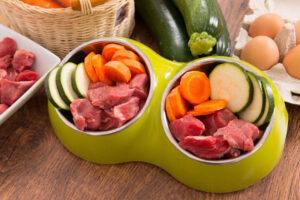 dieta barf co warto wiedzieć